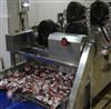 FG-6000型多功能食品风干机 网带输送干燥机