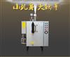 旭恩小型电热蒸汽发生器